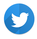 Twitter icon white bird on blue background